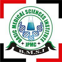 ideal-web-designer-portfolio-BMSI-logo