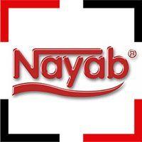ideal-web-designer-portfolio-nayab-logo